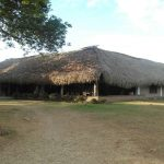 Ecolodge Colombia In Plain